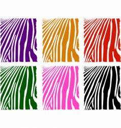 Color zebra skin set vector