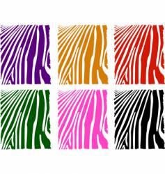 color zebra skin set vector image vector image
