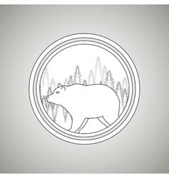 Wild bear design vector
