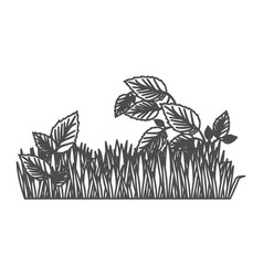 Grayscale contour of field grass and plants vector