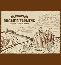 Pumpkin organic farming landscape vector