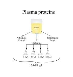 Plasma proteins albumin fibrinogen globulin vector