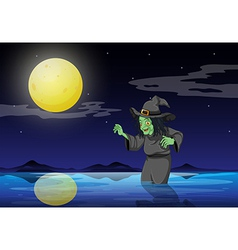 A witch at the beach vector image vector image