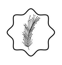 Beutiful feather decoration deign vector