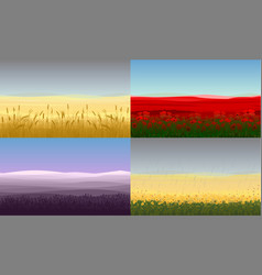 Colorful beautiful field landscapes set vector