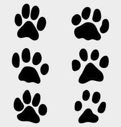 paw of cats vector image