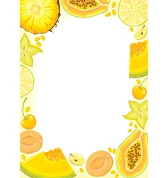 Yellow fruits and berries frame vector image