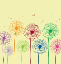 Dandelion colorful vector