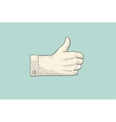 Drawing of hand sign with thumbs up in engraving vector image vector image