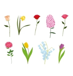 Set of flowers isolated vector