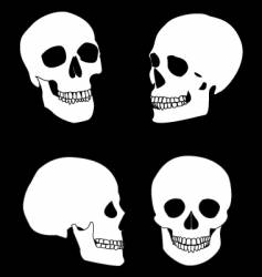 The black and white skull vector