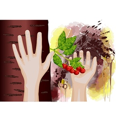 cherry in hand vector image vector image