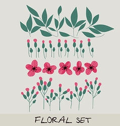 Floral set collection with leaves flowers vector