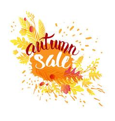 Autumn sale design vector