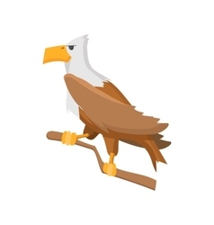 Bald eagle cartoon icon vector