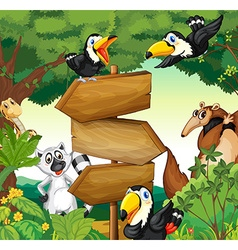 Wild animals around the wooden sign in woods vector image