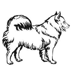 decorative standing portrait of dog samoyed vector image vector image