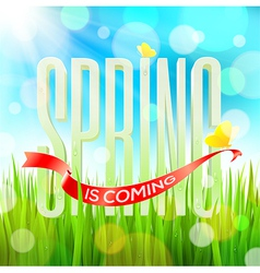Spring greeting letters on a sunny field vector image