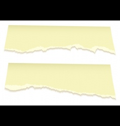 top torn pages in yellow vector image
