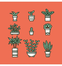Set of houseplants in pots vector image