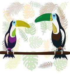 A couple of toucans vector image