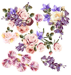 Beautiful collection of rose flowers vector