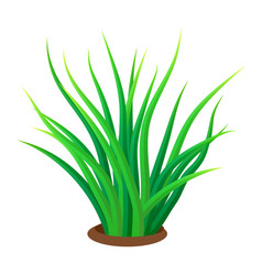 grass icon realistic style vector image