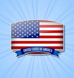 American icon vector image vector image