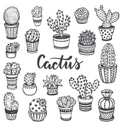 Collection of hand drawn cactus in sketch style vector