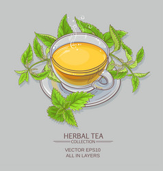 nettle tea vector image vector image
