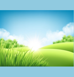 Summer nature sunrise background a landscape with vector
