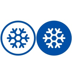 two snowflake signs vector image