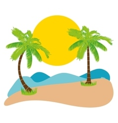 Summer palm tree vector