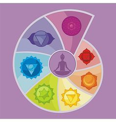 The seven chakras vector