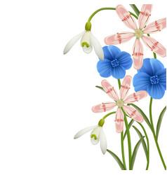 Floral background spring flowers vector