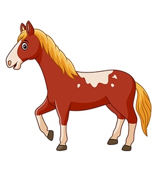 Beautiful horse posing isolated vector