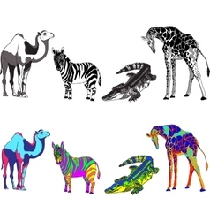 with the image of zebra giraffe vector image