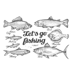 Fishing hand drawn fish sketch trout vector