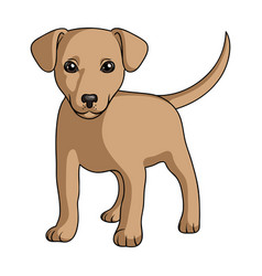 Puppy labradoranimals single icon in cartoon vector