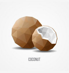 Colorful sweet natural coconut fruit concept vector