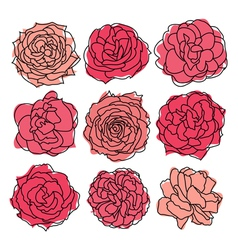 9 decorative roses vector
