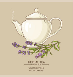 lavender tea in teapot vector image