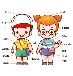 Vocabulary clothing vector
