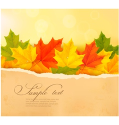 autumn background with autumn leaves and old paper vector image vector image