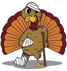 Injured Turkey vector image