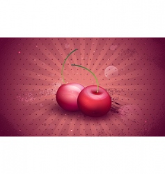 vector fresh cherries vector image vector image