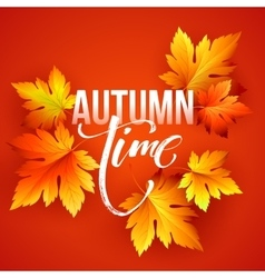 Autumn time seasonal banner design Fall leaf vector image