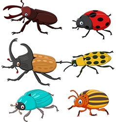 Cartoon funny beetle collection vector