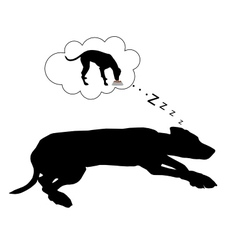 Dog dreams of feeding vector image vector image