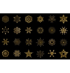 Golden snowflakes isolated vector image